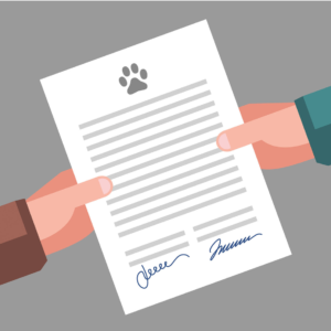 Contrat vente – ATTENTION